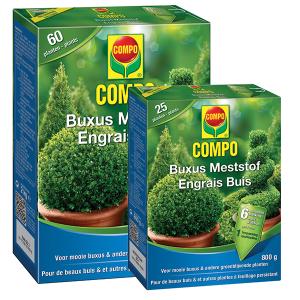 COMPO_Buxus_meststof_lepona_tuinarrangeurs