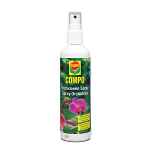 Compo_Orchideeën_Spray_lepona_tuinarrangeurs